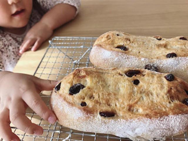自家製酵母パン教室で捏ねたお持ち帰り用の生地で焼いたパンを取ろうとする娘の手。