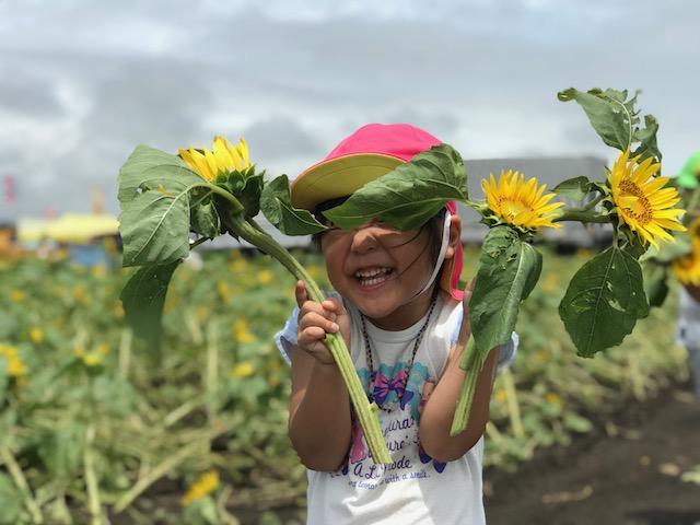 高鍋町のひまわり畑。ひまわりと笑顔の嬉しそうな娘。