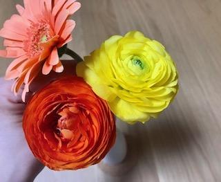 卒園式で息子からもらったきれいなお花
