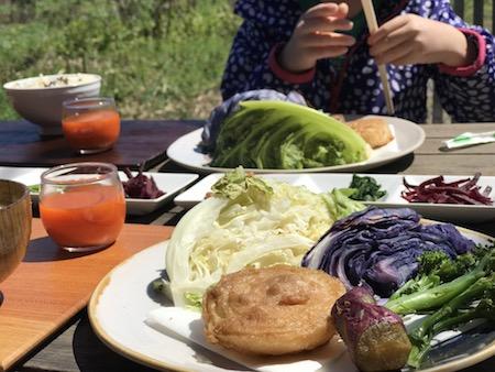 春分の日に宮崎県綾町の早川農苑さんで旬野菜ランチ