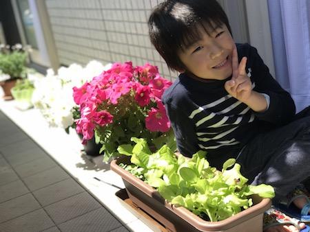 ベランダ菜園、きれいなお花と一緒にいる笑顔の息子