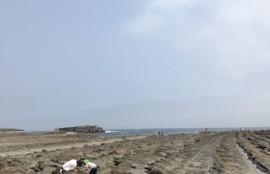 こどもの日に宮崎市青島の磯で海の生き物探しを楽しむパパと子どもたち