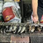 宮崎県三股町しゃくなげの森のやまめ祭りで釣ったヤマメの炭火焼き。